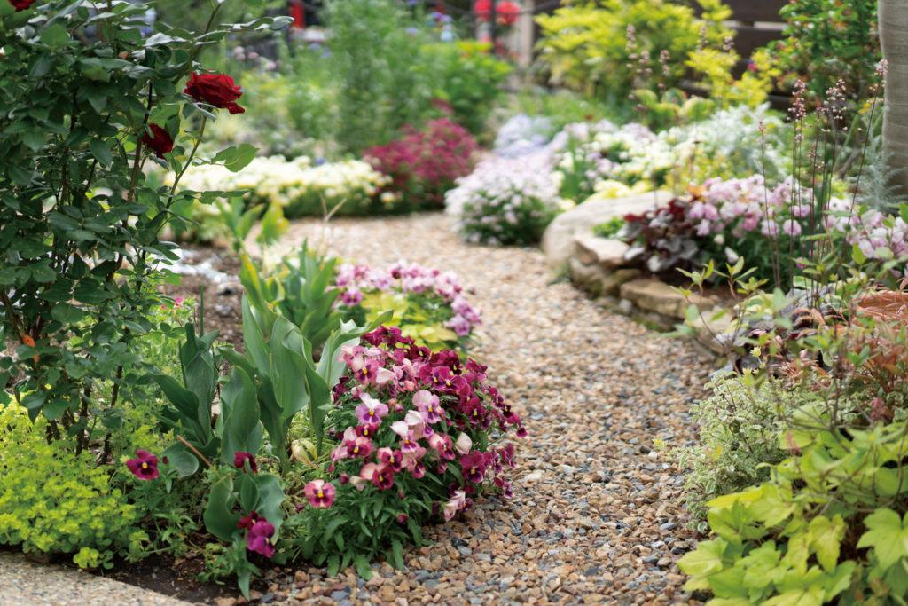庭を花でいっぱいにしたい